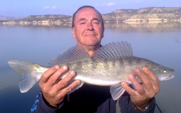 Sandacz z Rio Ebro w Hiszpanii