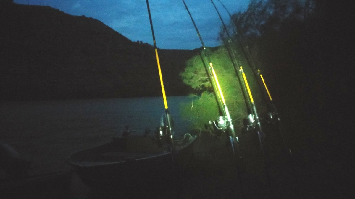 Nocka nad rzeką Ebro